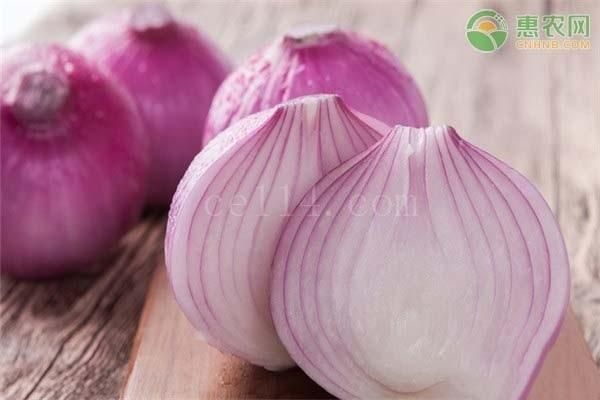 生吃白洋葱好还是紫洋葱好?