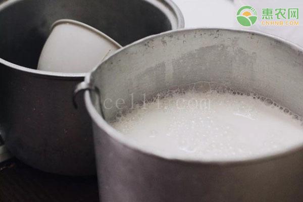 水牛奶和纯牛奶有什么区别?