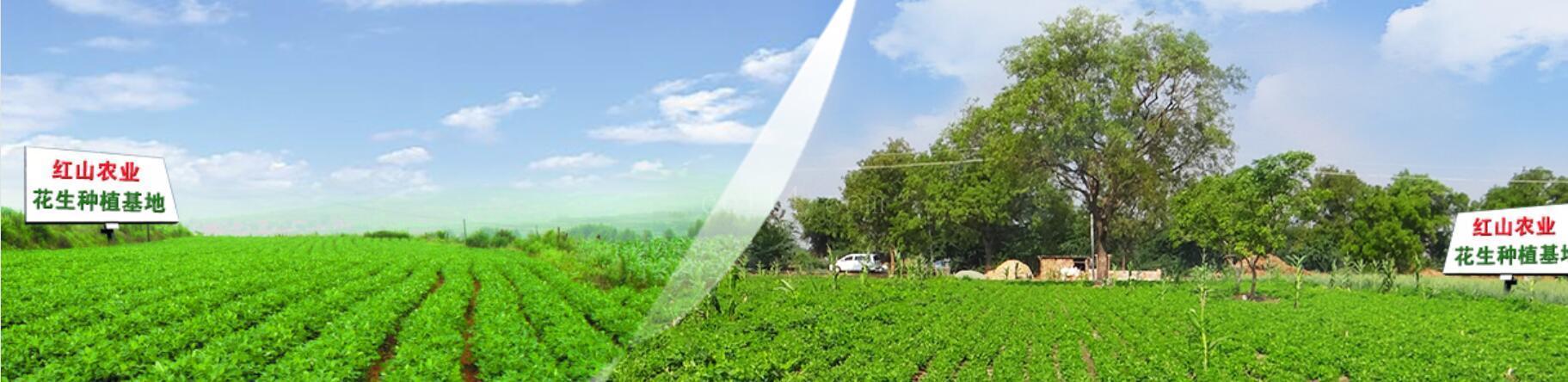 公司简介-龙岩市红山农业开发有限公司