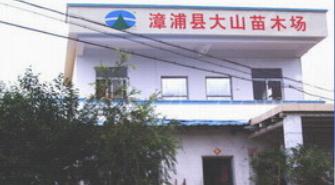 公司简介-福建漳浦县大山苗木场