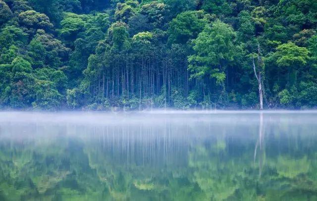 三明森林康养五日游