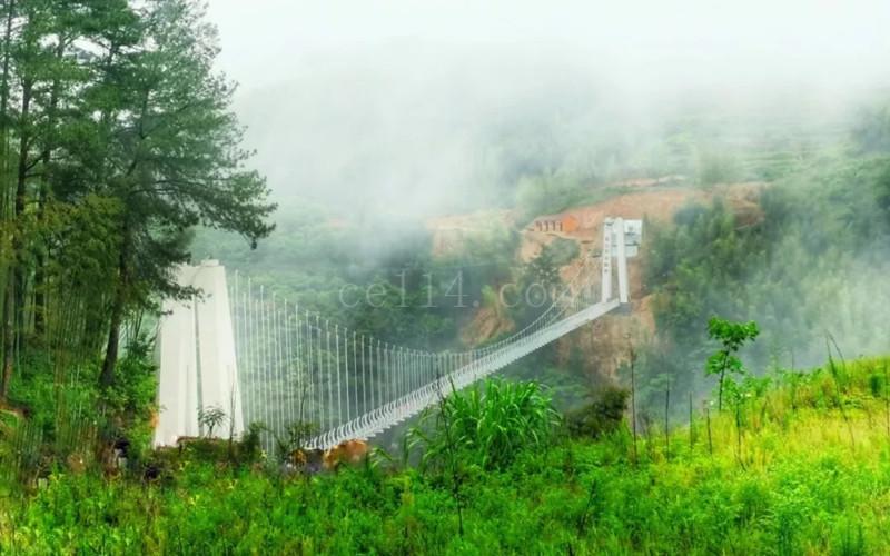 政和玻璃桥云谷鹊桥、屯福桥、白茶小镇一日游