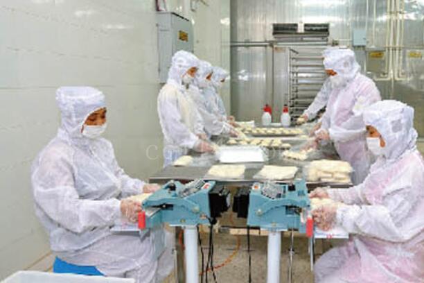 公司簡介-漳州市早豐食品有限公司