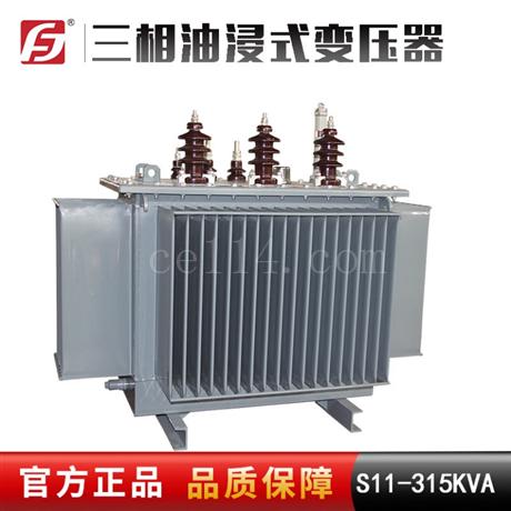 浙江供应 S11-315KVA 10/0.4KV 三相油浸式变压器 配电降压