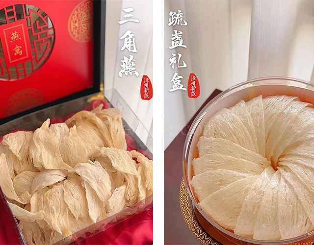 漳州新燕——三角燕