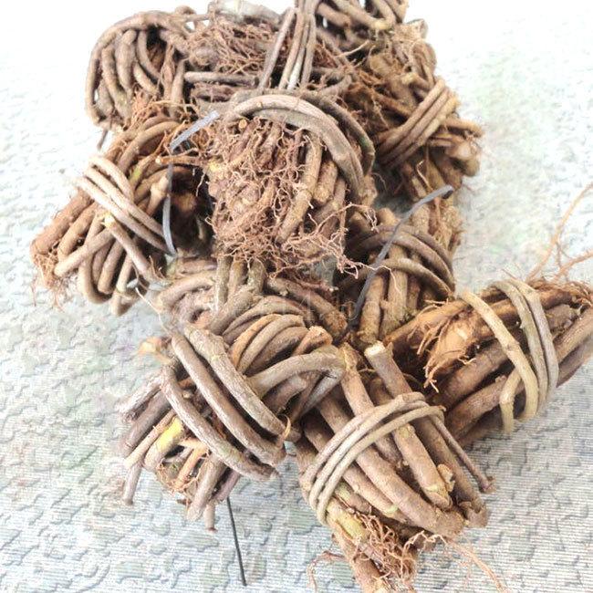 龙岩香藤根
