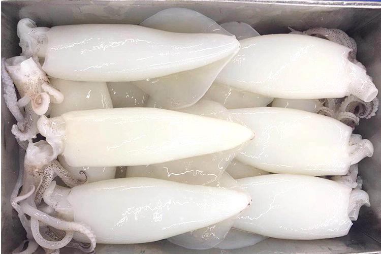 漳州鱿鱼筒