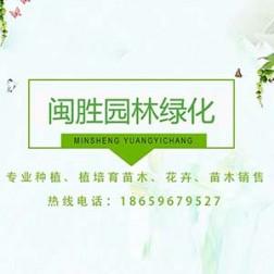 漳州市闽胜园林绿化工程有限公司