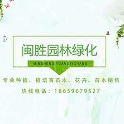 漳州市閩勝園林綠化工程有限公司