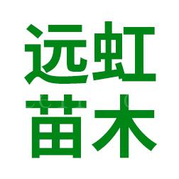 平和县远虹苗木专业合作社