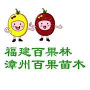 漳州百果苗木有限公司