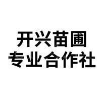平和县开兴苗圃专业合作社