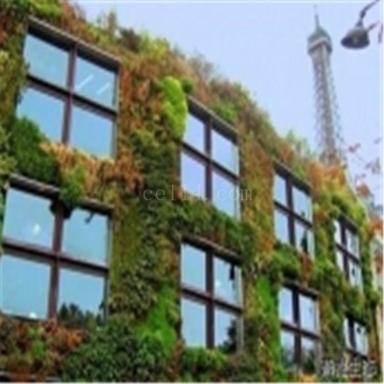 厦门城市立体绿化定制
