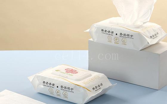 泉州手口湿巾生产厂家