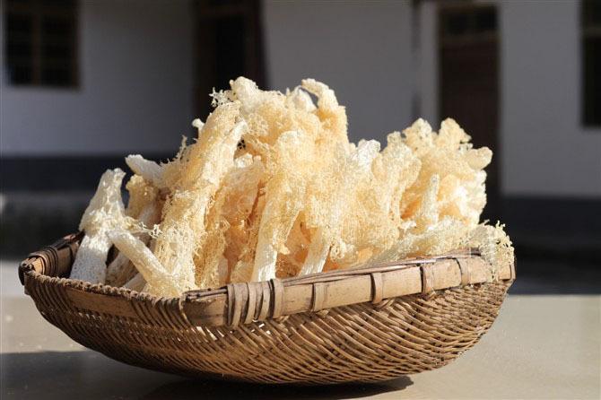 干竹荪怎样泡发和保存,让龙岩顺腾商贸小编给您讲讲