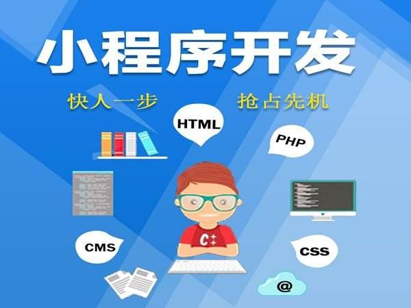 小程序定制开发公司