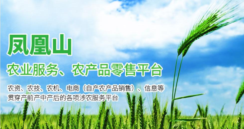 公司简介-龙岩凤凰山农业发展有限公司