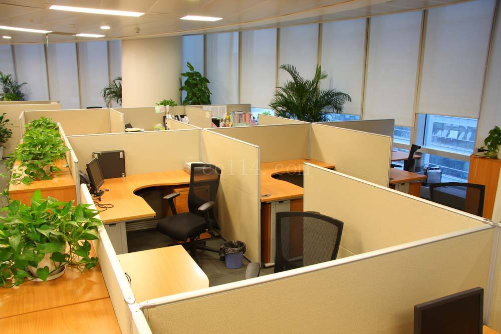 办公家具受潮如何快速修复?***少人知道的方法!