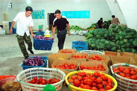 厦门蔬菜配送中心