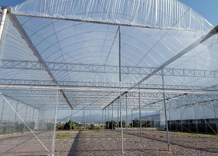 龙岩大型温室大棚 蔬菜温室大棚