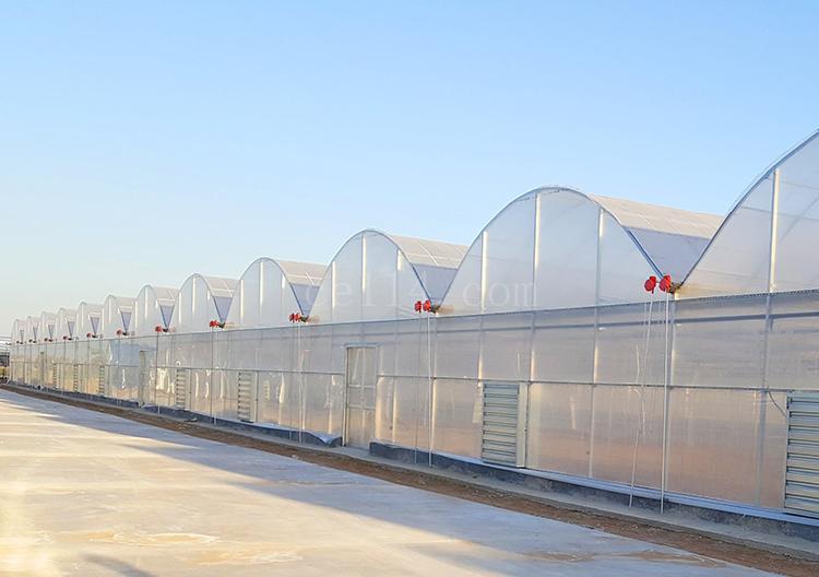 如何对温室大棚进行通风控制?