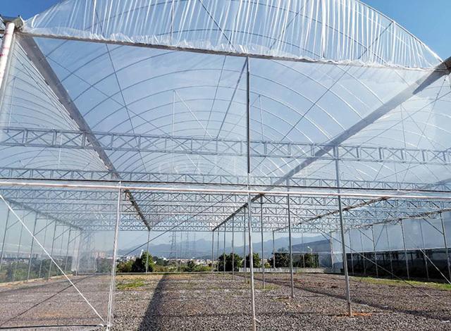 温室大棚的温度如何更好的保持