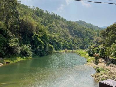 泉州乡村天然小溪