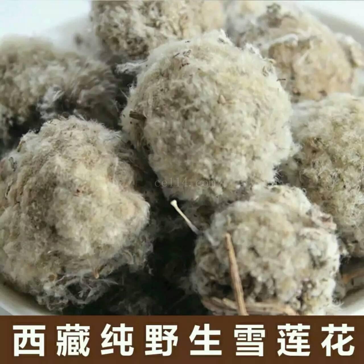 泉州西藏土特产西藏红雪莲