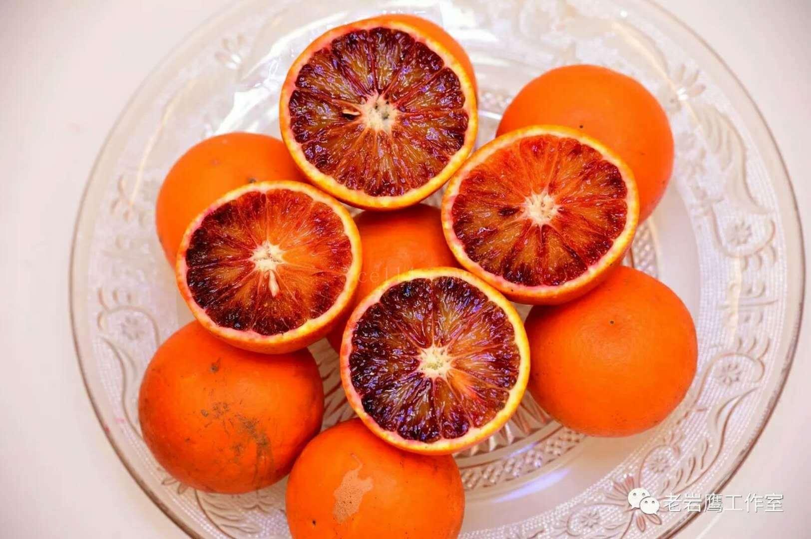 麻阳血橙直销