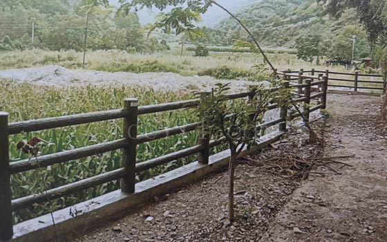 龙岩水泥栏杆安装