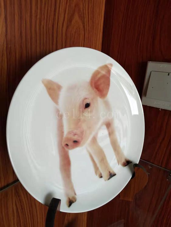 陶瓷瓷盘有何优点?和上杭广艺陶瓷制品小编来了解