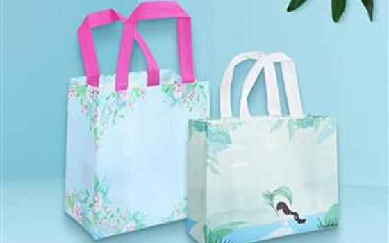 漳州广告印刷制作彩色淋膜袋套装